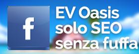 link al gruppo Facebook EV Oasis, SEO senza fuffa